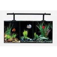 Aqua One Betta Trio Aquarium 32 Lts (55x25x25 cm)